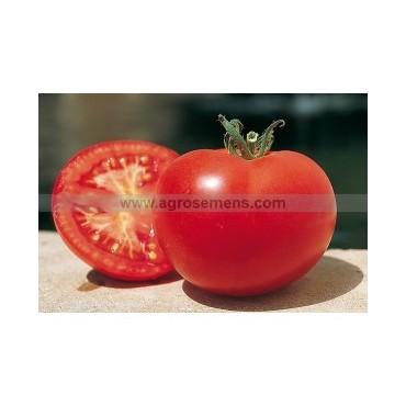 Tomate Saint-Pierre