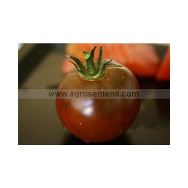 Tomate rouge russe