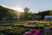 Jardin des Alpes - Accueil Pro