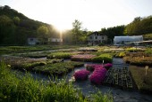 Jardin des Alpes - Accueil Particuliers